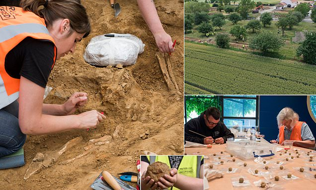 Human remains and cannon ball unearthed at Battle of…