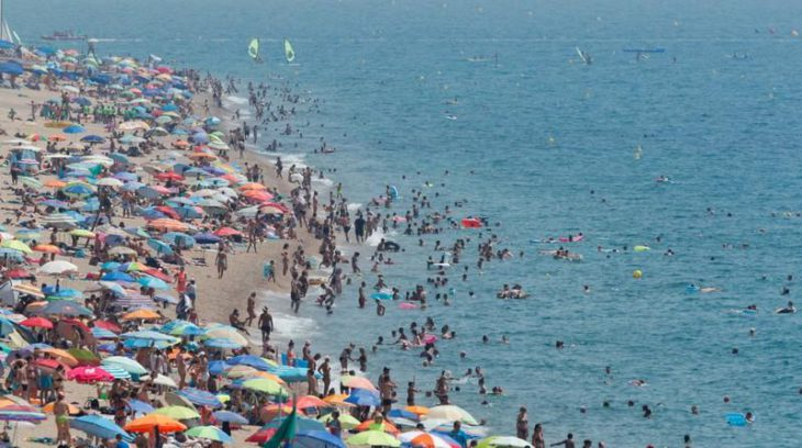 Ice cubes for tigers as heatwave smashes records in Europe