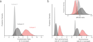 Distinct rates and patterns of spread of the major HIV-1 subtypes in Central and East Africa