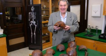 Scientists narrow age estimate for fossils of human ancestor – CP24 Toronto's Breaking News