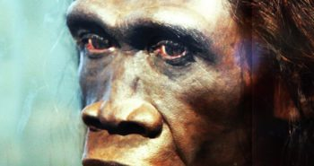 New Evidence Shows These Human Ancestors Mysteriously Died Out 117,000 Years Ago