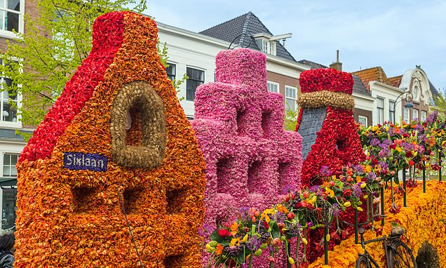 Why you should visit Haarlem, one of Holland's most beautiful towns