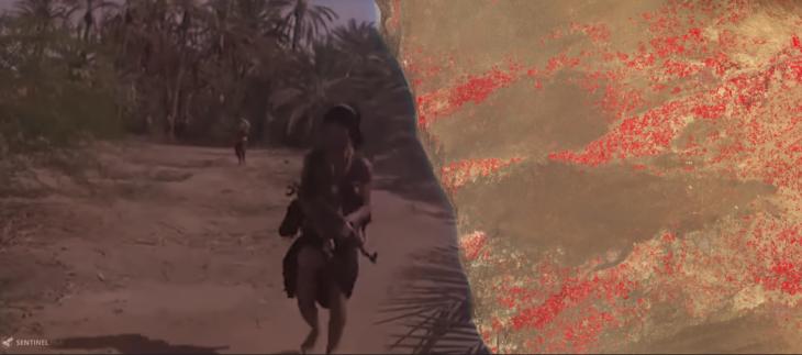 Yemen's Disappearing Date Palms: Applied Environmental OSINT