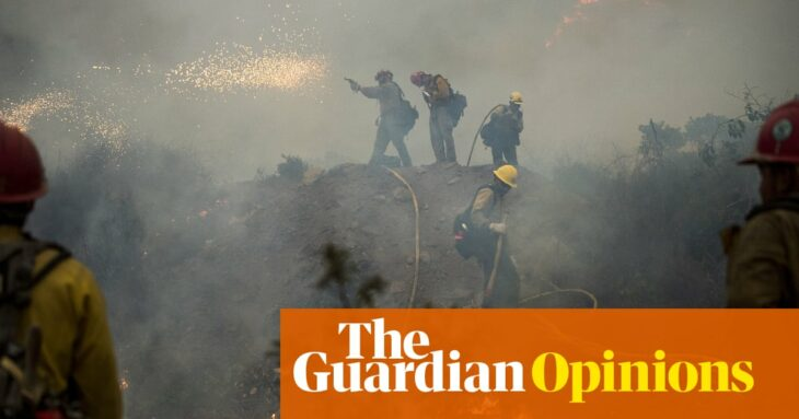 What turned California forests into a tinderbox? Fire suppression, paradoxically | Valerie Trouet